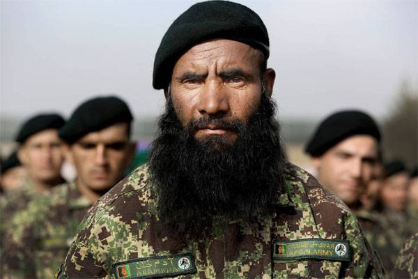 """США поставили в Афганистан """"лесной"""" камуфляж. Теперь ищут лес"""