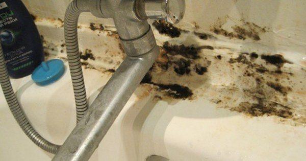 Черная плесень оккупировала ее ванную! Тогда она взяла 1 пузырек этого средства…