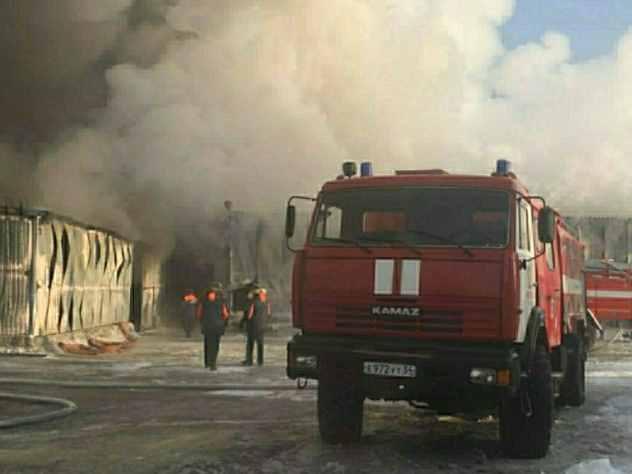 Стала известна причина крупного пожара около зоопарка в Перми