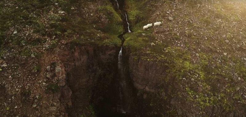 Дикая природа дрон, исландия, кадр, красота, мир, природа, съемка