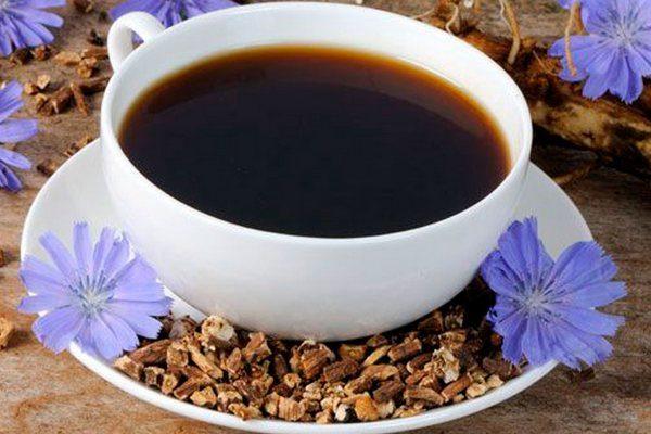 Целебные свойства напитка из цикория