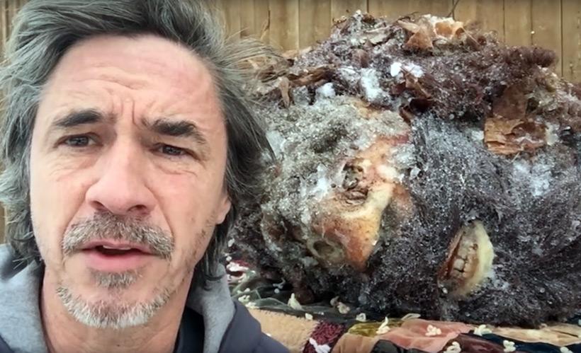 Питер Кейн опубликовал видео с замороженной головой Бигфута