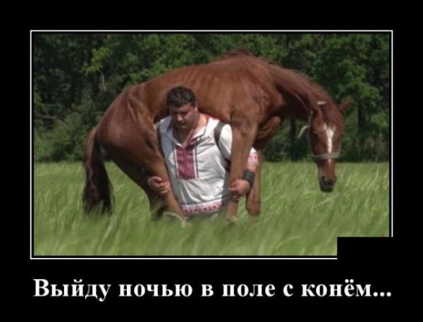 Заведу друзей. Иван Сусанин.