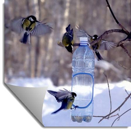 Кормушка для птиц из пластиковой бутылки и деревянная кормушка своими руками