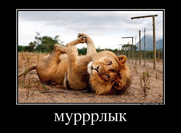 Как выручил друг))))