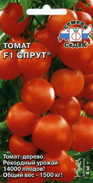 """Вновь о """"томатном дереве"""" - Спрут F1"""