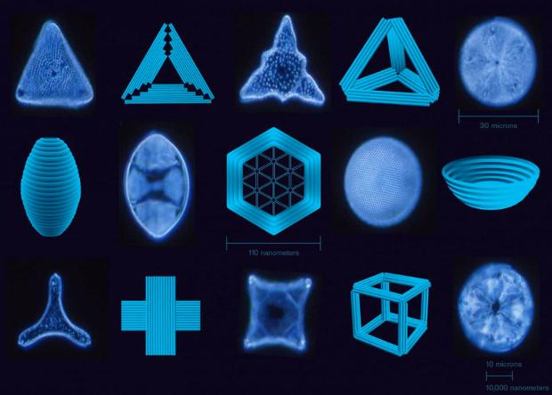 ДНК-оригами помогло получить…