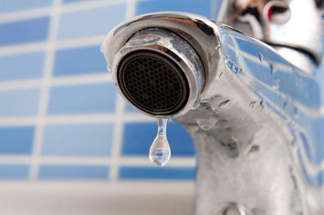 От пиявок до хлороформа. Чем богат наш водопровод?