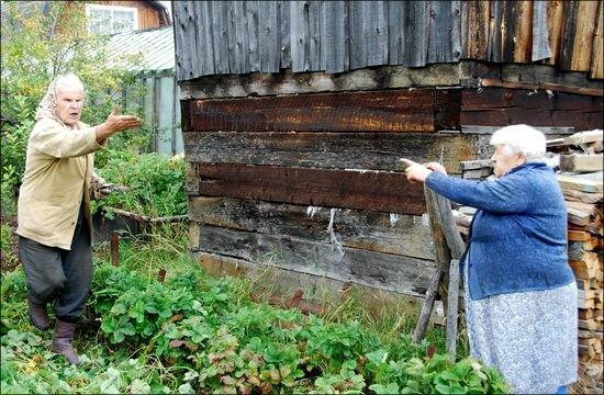 О наглых соседях по даче, ведрами малину и удобрения воровали.