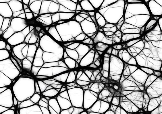 Мозг, как художник - живет фидбеком