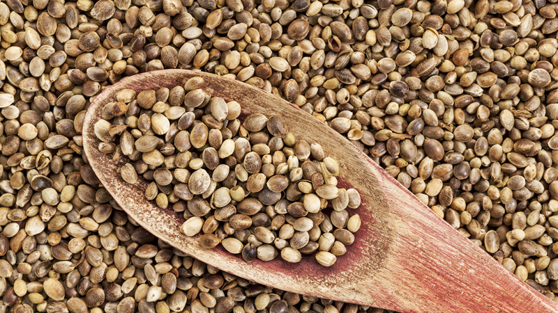 Самые полезные семена