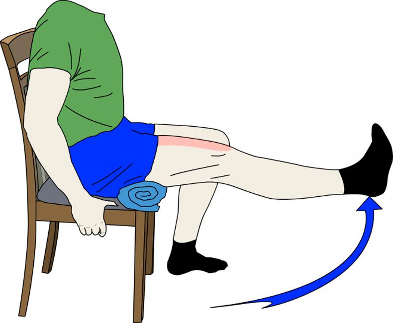 Укрепляем позвоночник, поясницу, пресс и ноги – всего 1 упражнение!