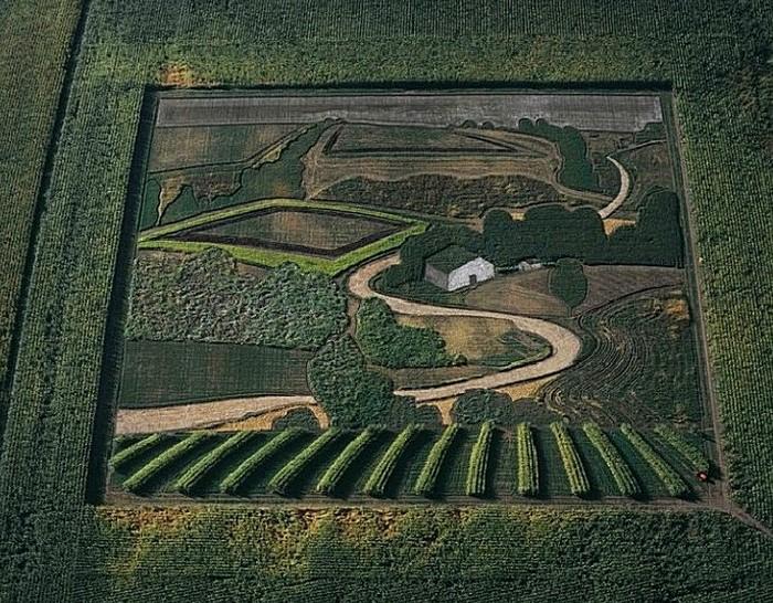 Стэн Хёрд — очень необычный живописец, холстом для которого служат поля