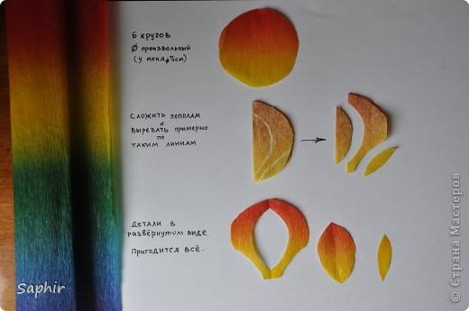 Поделка изделие Бумагопластика цветы из гофробумаги  мастер-класс Бумага гофрированная фото 3