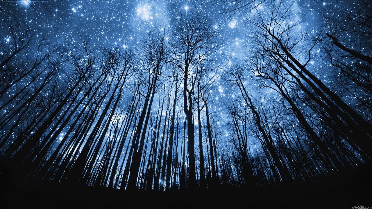 Свет Звёзд...