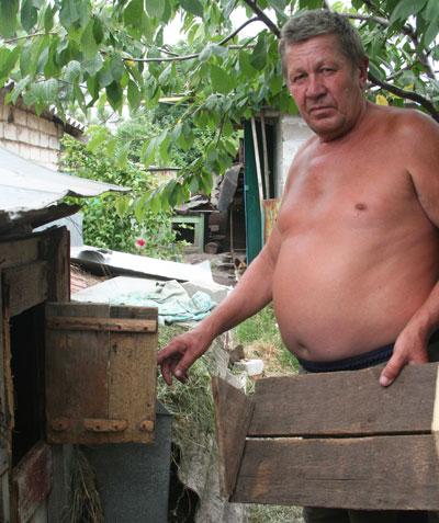 В Украине в поселке Новотроицкий исчезли лисы, пропадают коты и псы