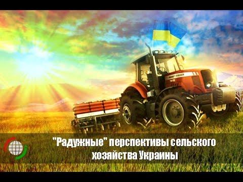 Перспективы сельского хозяйства Украины