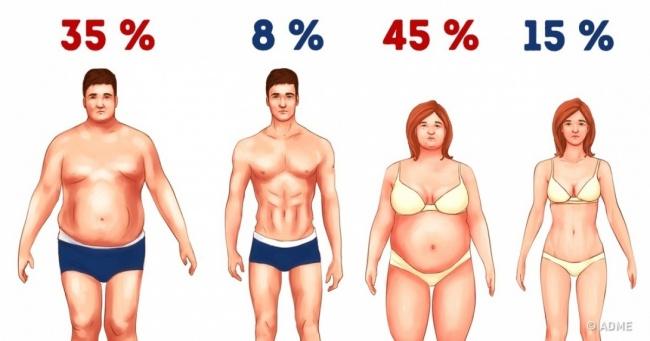 3 простейших способа сжечь лишний жир без голодовки и тренировок