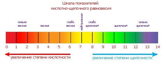 prodolzhitelnost-zhizni-spermatozoida-vne-shelochnoy-sredi