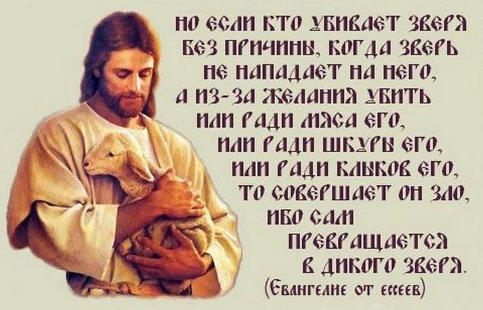 Евангелие Мира от ессеев./ Фото: change.org