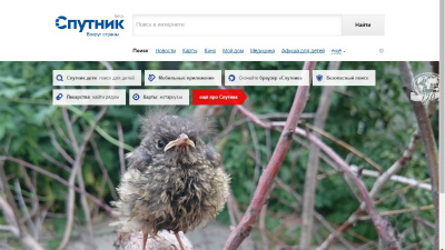 Браузер «Спутник» включен в единый реестр российского ПО