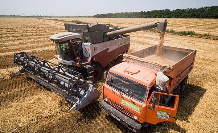 Россия уже выиграла чемпионат мира по... поставкам пшеницы