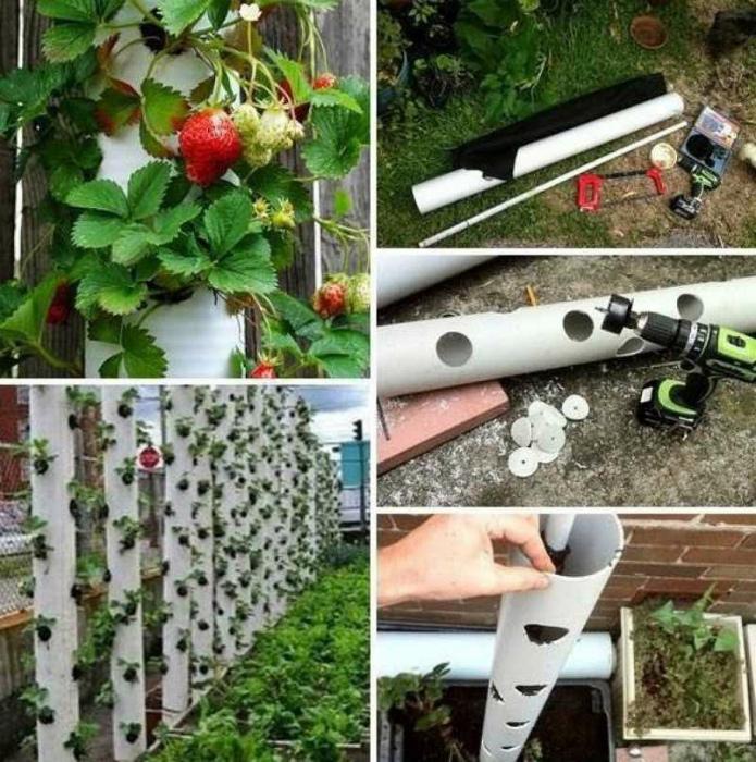 Вертикальные грядки для выращивания клубники.