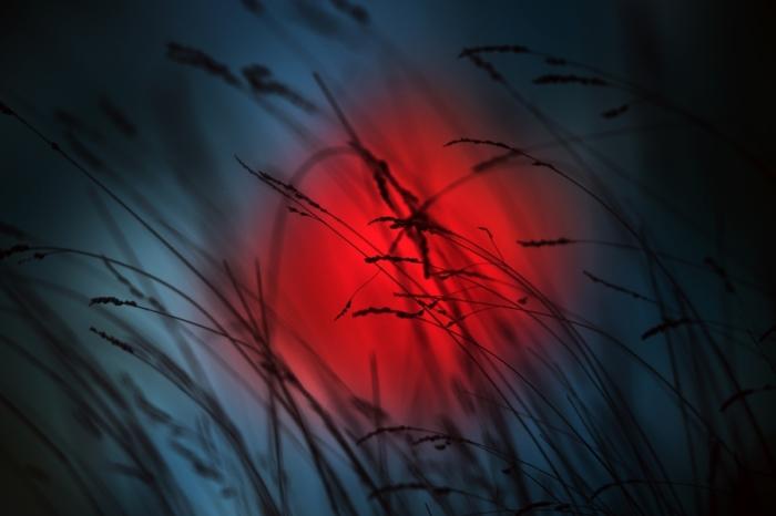 Солнце. Автор: Luis Mariano Gonzalez.