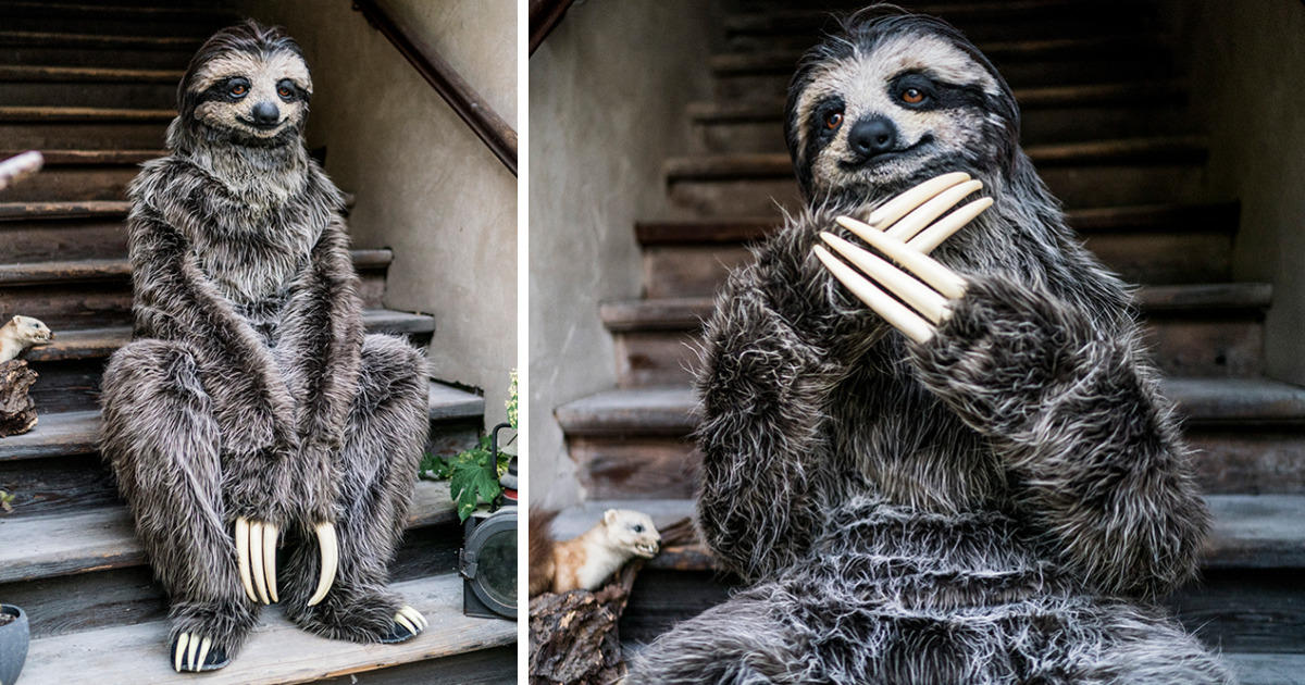 I Created A Realistic Sloth Costume
