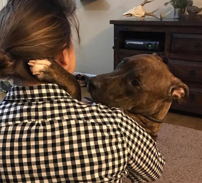 «Я так тебя ждал!» Спасённый пёс ежедневно благодарит хозяйку за добро…