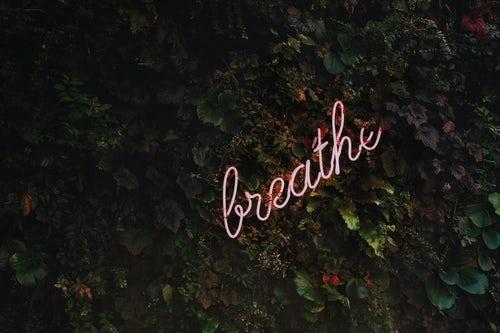 Красивые цитаты о смысле, красоте и ценности жизни