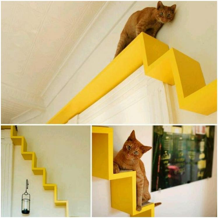 Как сделать коту полки