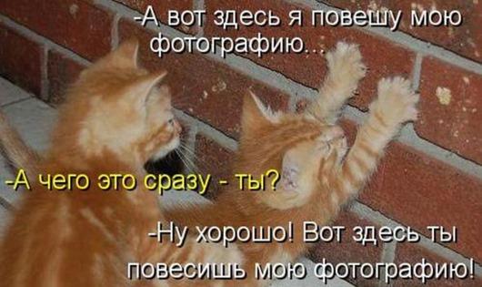 6f6b4438e7886e3531b91e896a5_prev