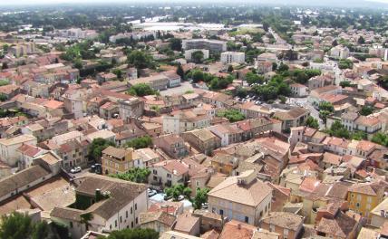 Корреспондент «СП», поработав на плантациях во Франции, делится впечатлениями о «европейской сказке»