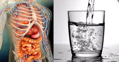 9 вещей, которые вы не должны делать на пустой желудок