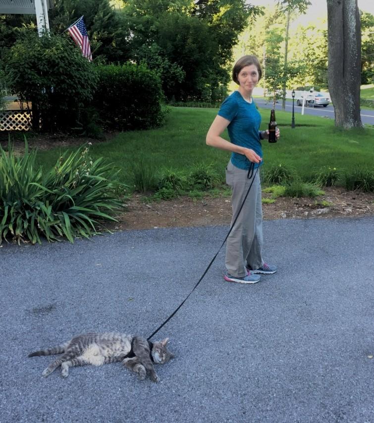 """""""Моя жена пыталась выгулять кошку"""" гифки, животные, кошки, приколы"""