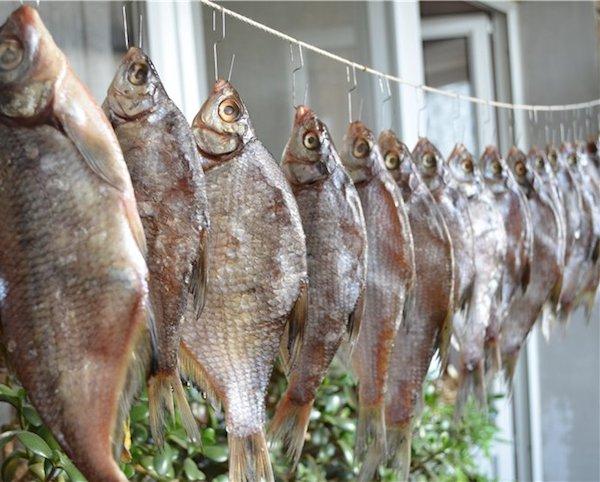 Четыре способа хранения сушеной рыбы