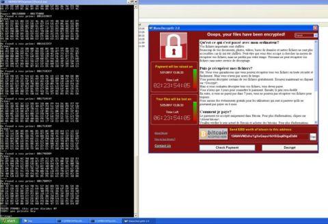 Зашифрованные WannaCry файлы на Windows XP можно вернуть бесплатно