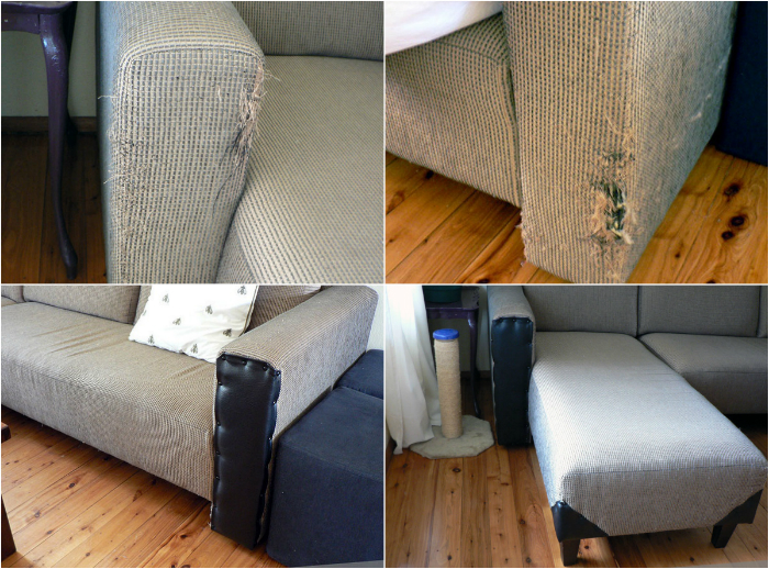 Картинки по запросу кот ободрал угол дивана,