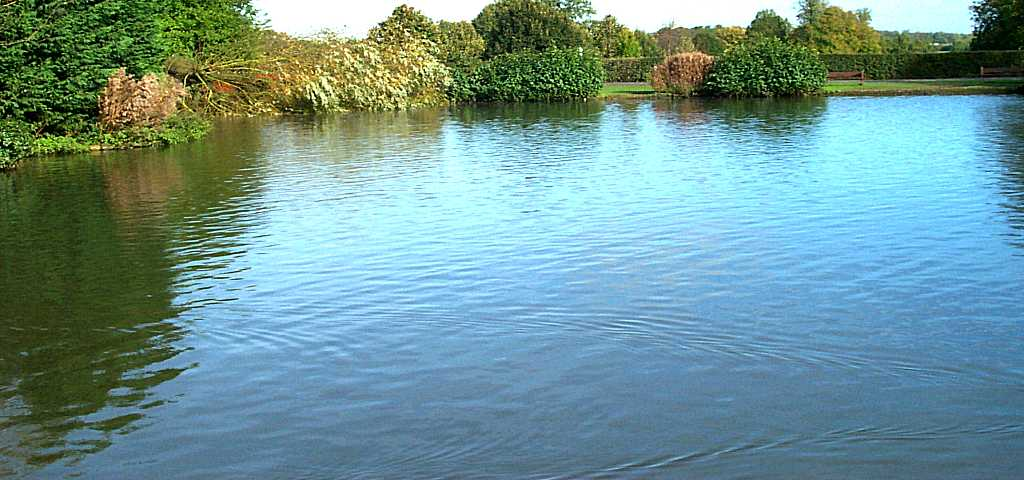 Умение понимать водоем