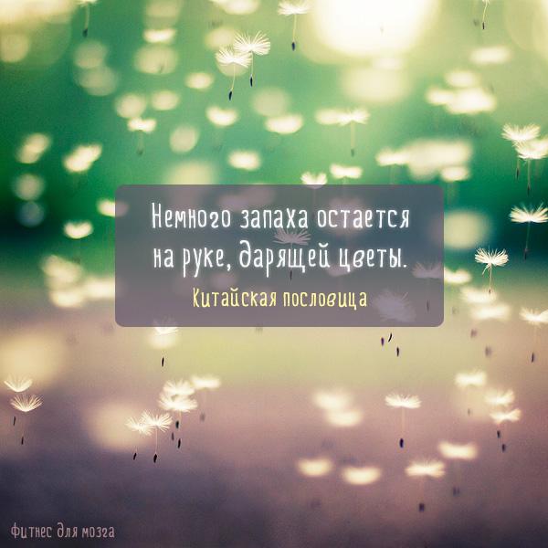 мысли, к которым стоит прислушаться)