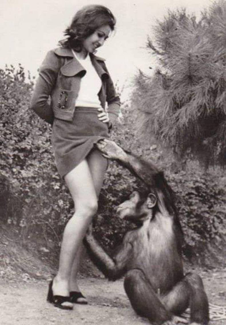 Monkey with gril pron imnge xxx movie