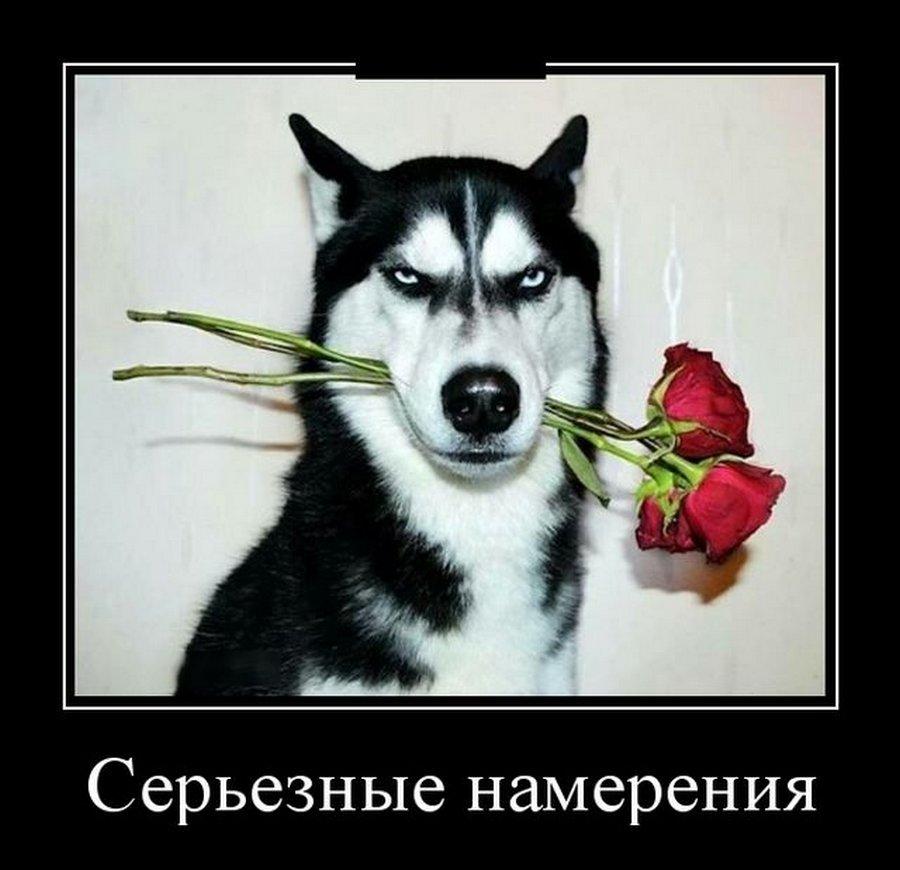 О собеседовании в компании))