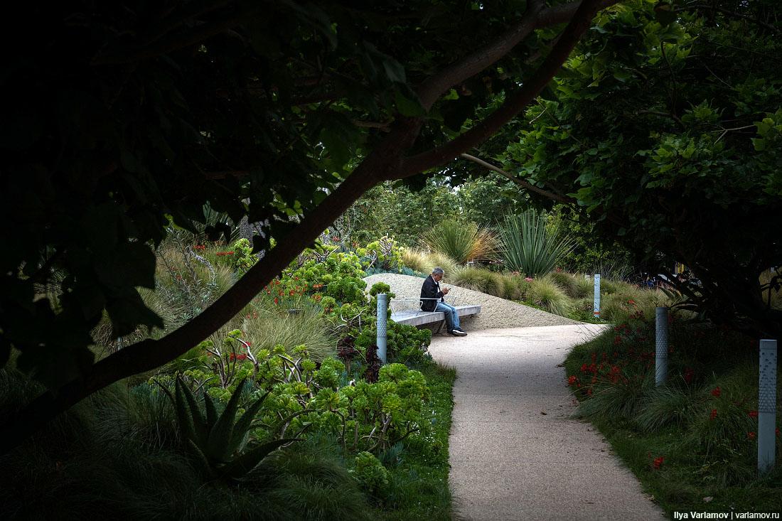 Санта-Моника превращается из города для автомобилей в город для людей