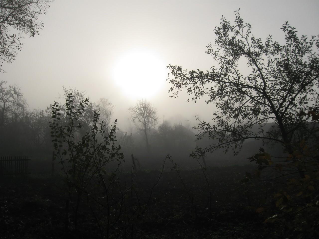 Мгновения нашей жизни: «Снова хмурое утро…»
