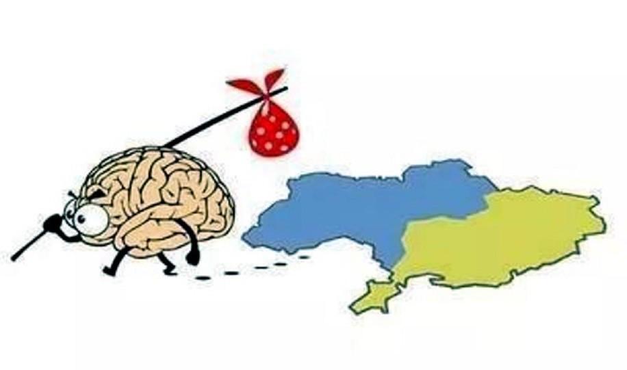 Пока одни украинцы дохнут за киевскую власть, другие украинцы её «свергают»