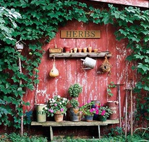 Украшение дачи цветами фото