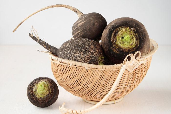Черная редька - полезный русский народный овощ