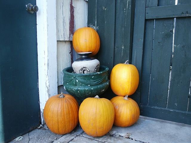 november-fall-pumpkin-autumn-october-pumpkins-207854_01