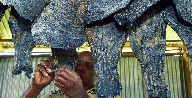 В Кении шьют одежду из рыбьей кожи
